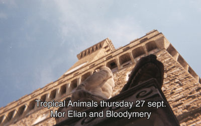 27th September 2018 : Tropical Animals with Mor Elian and Bloodymery