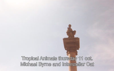 11th October 2018 : Tropical Animals with Michael Byrne and Interstellar Cat