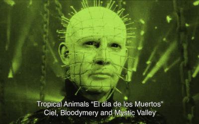 """31th October 2018 : Tropical Animals """"El dia de los Muertos"""" with Ciel, Bloodymery and Mystic Valley"""