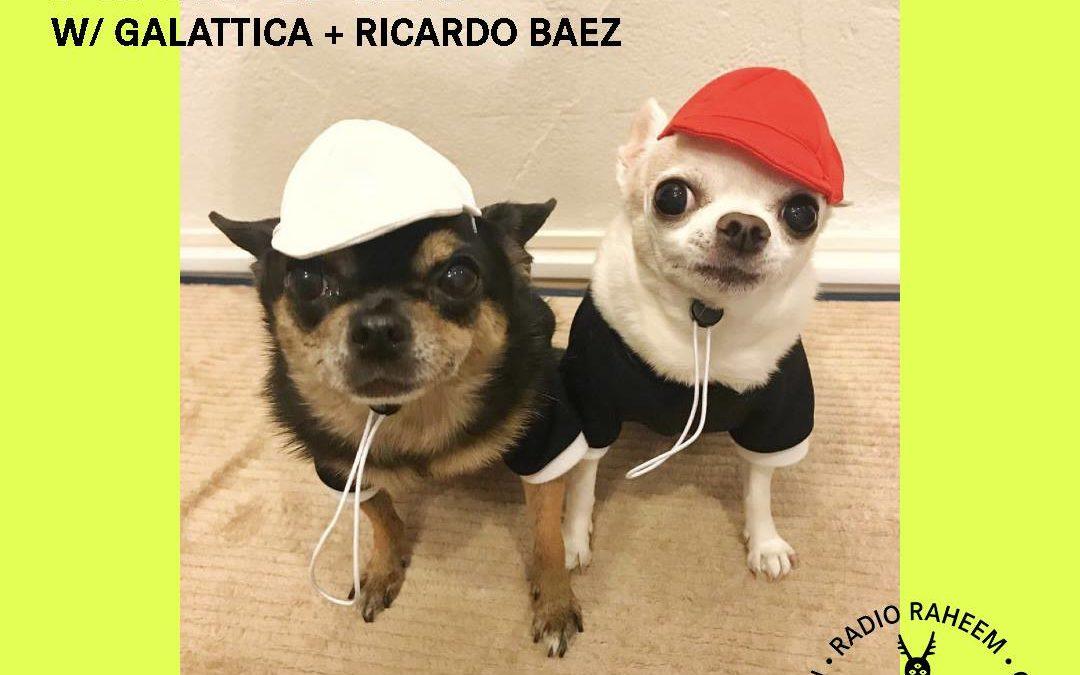TROPICAL ANIMALS SHOW with RICARDO BAEZ + GALATTICA at RADIO RAHEEM