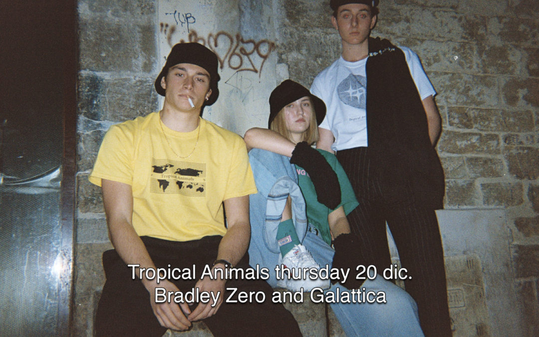 20th Dec 2018 : Tropical Animals with Bradley Zero and Galattica