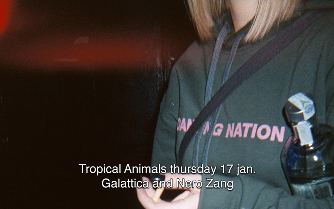 17th Jan 2019 : Tropical Animals with Galattica and Nero Zang