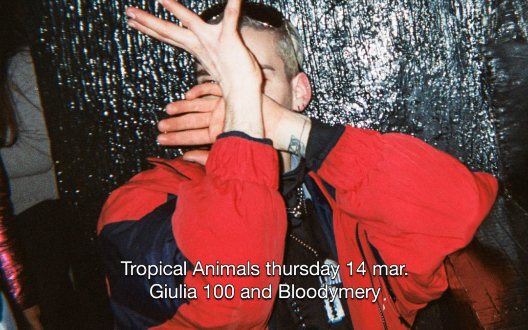 14th Mar 2019 : Tropical Animals pres. Giulia 100 and Bloodymery