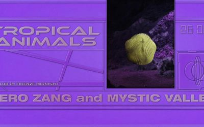 Tropical Animals – The day after Xmas – with Mystic Valley and Nero Zang