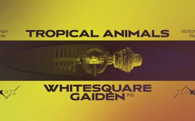 Tropical Animals w/ Whitesquare (Life and Death) and Gaiden